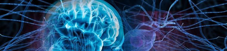 дайджест неврология