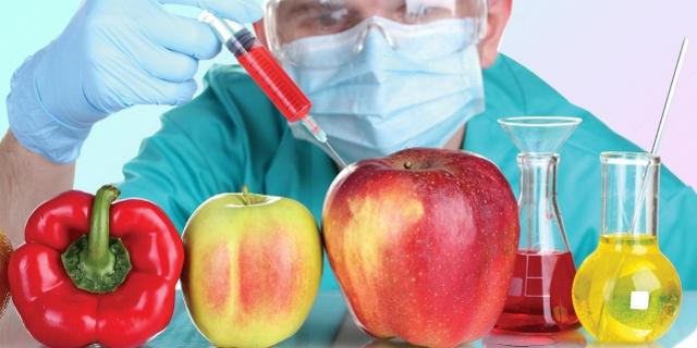 Пугают - не ешь ГМО